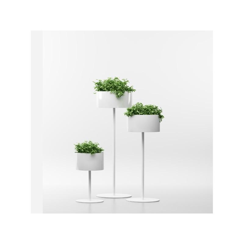 Macetero green cloud for Maceteros para salon